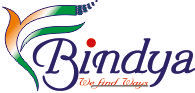 Bindya Cargo Pvt Ltd